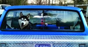 Realistic Husky Stickerhusky Car Decal Etsy