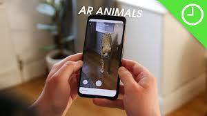 3D Animals ...