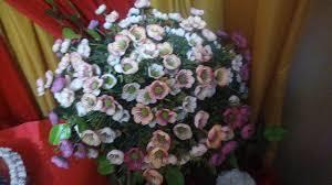 quotes dari bunga steempeak