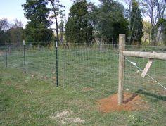 30 Wire Fence Ideas Fence Wire Fence Farm Fence