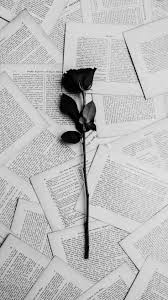 bad girl quotes mawar hitam wattpad