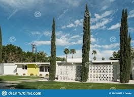 Palm Springs California Classic Midcentury Residential Architecture Stock Photo Image Of Fence Cactus 174700602