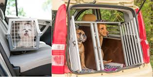 dog crates and carriers for car travel