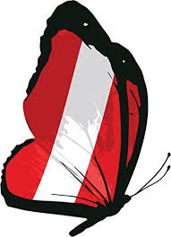Peru Butterfly Flag Home Decal Vinyl Sticker 10 X 14 You Can Get Additional Details At The Image Link It Is An Affilia Vinyl Sticker Window Stickers Vinyl