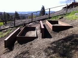 backyard farming sloped garden