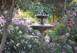 fountain in the rose garden fountains