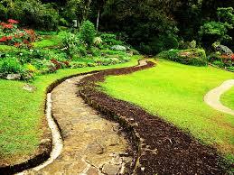 footpath sri lanka green grass
