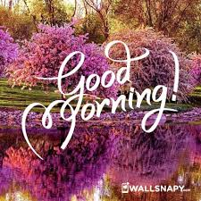 whatsapp free good morning hd