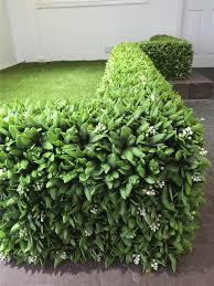 Hedged In Ltd Stockport Landscape Gardeners Construction Co Uk