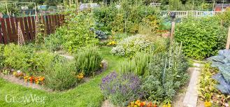before starting a vegetable garden