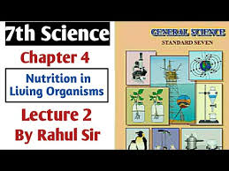 chapter 4 nutrition in living organism