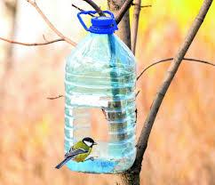 Karmnik dla ptaków - e-ogrody