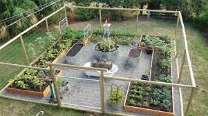 secrets to growing a vegetable garden