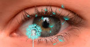 eye care lockport family eye care