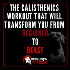 the calisthenics workout that will