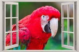 Parrot 3d Window Decal Wall Sticker Home Decor Art Mural Animals Birds J706 9 99 Picclick