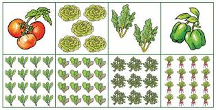 plans for small space vegetable gardens