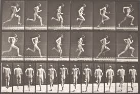 Eadweard Muybridge | Artists | Equinox Gallery