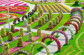 most beautiful flower garden free hd