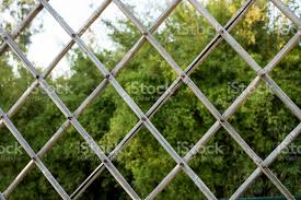 Wire Fence With Garden Background Stock Photo Download Image Now Istock