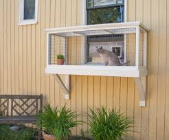 build a diy catio for your cat