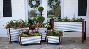 container gardening indoors and out