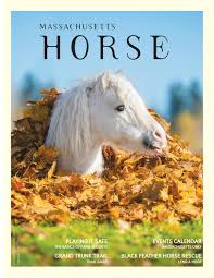 horse october november 2019
