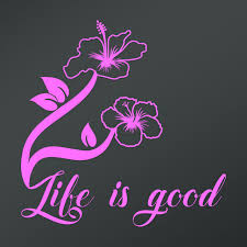 Car Truck Graphics Decals Life Is Good With Hibiscus Flower Vinyl Decal Sticker Truck Car Window Summer Auto Parts And Vehicles