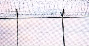 Fence Anti Climb Fence By Ong Fencing