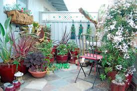 pot garden ideas solidaria garden
