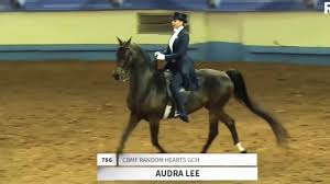Audra Lee 2020 Saddleseat USA World Cup Application Video - YouTube
