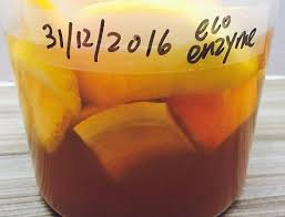 homemade eco enzyme 自制酵素 the