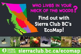 Sierra Club BC - Have you checked out our new EcoMap yet?... | Facebook