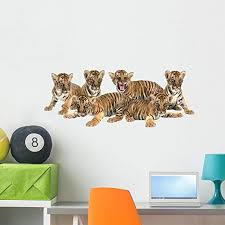 Amazon Com Wallmonkeys Wm361278 Baby Bengal Tiger Wall Decal Peel And Stick Graphic 36 In W X 20 In H Home Kitchen
