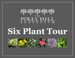 The Polly Hill Arboretum - Home | Facebook