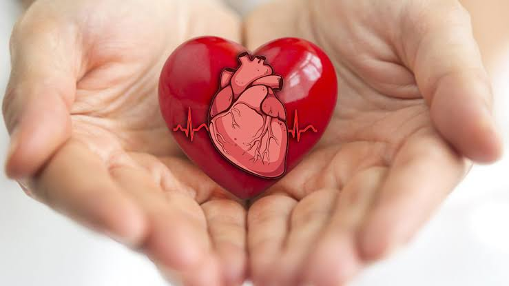 """Image result for HEALTHY HEART"""""""