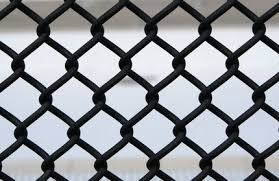 How To Attach A Trellis To The Top Of Chain Link Painted Chain Link Fence Black Chain Link Fence Chain Link Fence