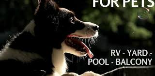 5 Types Of Temporary Fencing For Pets Petsweekly Com
