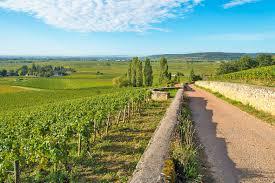 Escapade en Bourgogne - Dijon, Beaune | Bourgogne