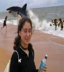 funny beach picture 12 bestfunnies