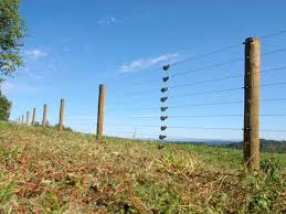 Electric Livestock Containment Fence Installer High Tensile Fence Electric Fence Fence