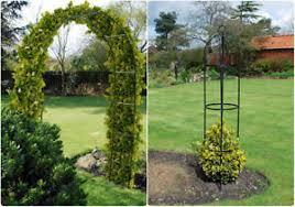 arch or obelisk metal garden climbing