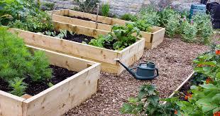 raised bed gardening benefits what do