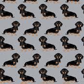 weiner dog wallpaper picserio