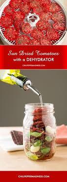 dehydrator recipes