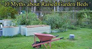 raised bed vegetable gardens or planters