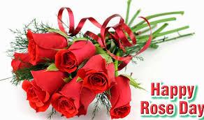 rose day whatsapp dp 1600x945