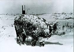 Severe Cold Weather Rangeland And Livestock Considerations Extension