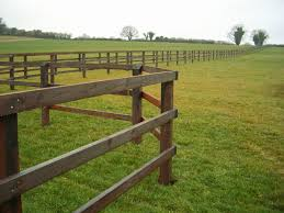Post And Rail Fencing Equine Fencing Specialists Suffolk All Season Fencing Ltd