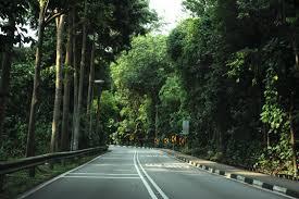 south buona vista road herie roads